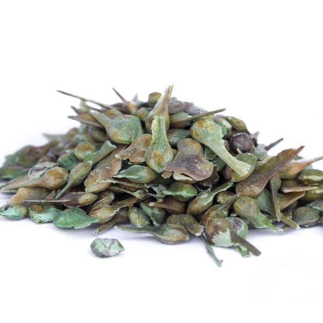Sementes de Pau-alho - Gallesia integrifolia - 500 unidades