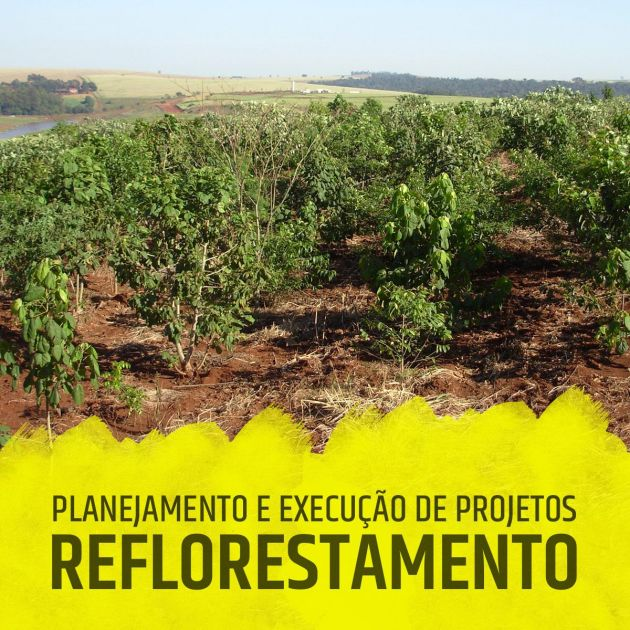 Serviços de Reflorestamento